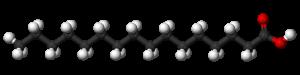 Estructura del ácido palmítico. Wikipedia, dominio público.